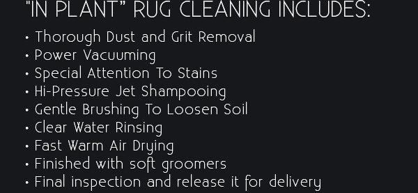 Professional Rug Cleaning Service
